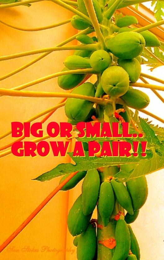 New Print: GROW A PAIR!!
